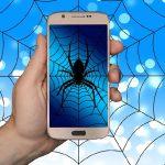 Spider Google Crawler o  araña web ¿Qúe es?